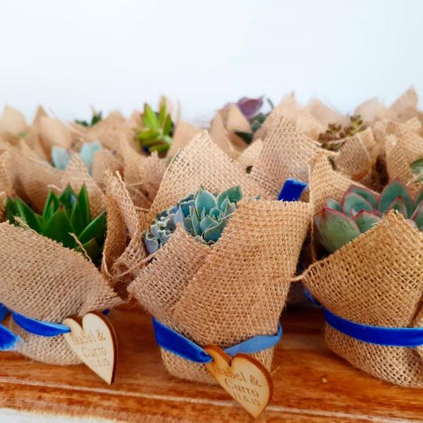 suculentas con yute regalo original para bodas