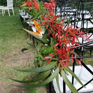 pasillo de flores al altar boda al aire libre