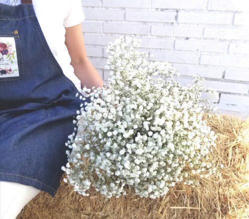 ramo de flores de paniculata