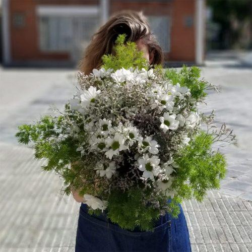 ramo de margaritas florencia