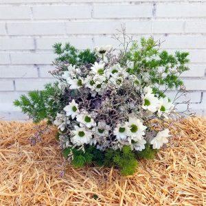 ramo de flores con margaritas silvestre