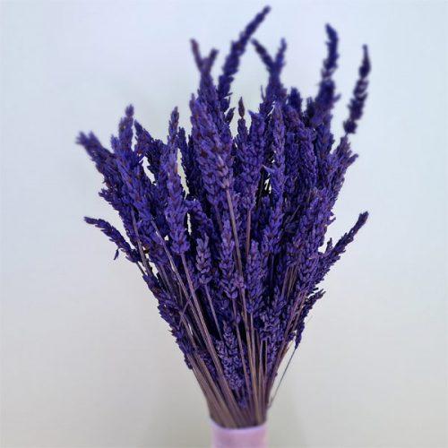 detalle de ramillete de lavanda de flores preservadas