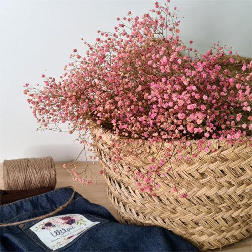 paniculata rosa para decoración del hogar