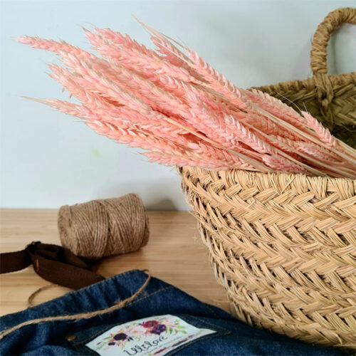 trigo rosa